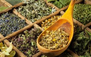 Какие травы эффективны для лечения печени